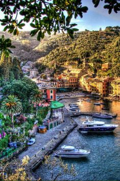 Portofino, Italy - Discover your paradise on http://www.exquisitecoasts.com/which-tropical-island-should-i-visit.html