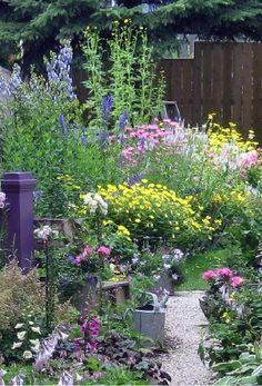 Cottage style garden- wild, bushy, colorful