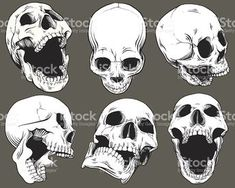 Arte Com Grey's Anatomy, Skull Anatomy, Tatto Skull, Skull Art, Skull Head, Skull Reference, Art Reference Poses, Hand Reference, Anatomy Drawing