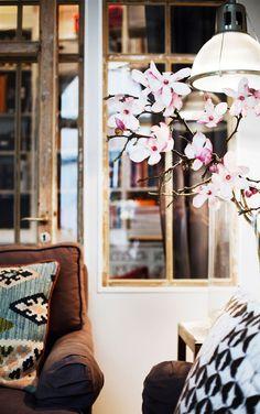 Stockholm Apartment, plantes, garden, house, cute, beautiful, flowers, living room, apartment, windows, door