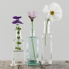 These Vintage Small Glass Bottles are pretty and surprisingly practical. Create gorgeous minimalist flower displays by adding individual blooms Small Glass Bottles, Glass Vase, Bottle Art, Beer Bottle, Medicine Bottles, Supper Club, Vintage Bottles, Flower Arrangements, Perfume Bottles