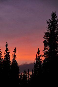 Yellowstone National Park, United States   by Stijn Kleerebezem