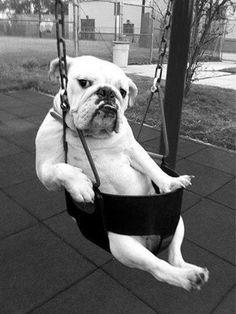 Post #: Como assim !...Já é segunda-feira ? Tenho que me preparar psicologicamente. Fui pega de surpresa....KKKKK