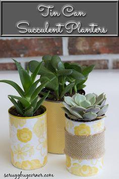 Tin Can Succulent Planters for Home Decor - Scruggbug Corner