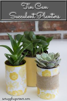 Tin Can Succulent Planters for Home Decor - Scruggbug Corner