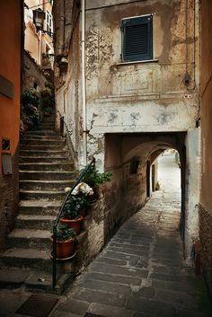 "wanderthewood: ""Vernazza, Liguria, Italy by Songquan Deng """