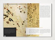 DISO _ book by Leo Calvillo