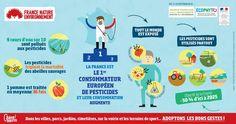 Zéro phyto : 4 infographies pour se passer des pesticides | France Nature Environnement