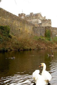 Cahir Castle~ Cahir, Tipperary, Ireland Copyright: Daniel Solinger