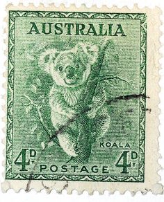 Australia, koala - (a lighter green version of an otherwise duplicate pin elsewhere on this board. If you know which is the coloring closer to the original, please let me know in a comment. Old Stamps, Vintage Stamps, Postage Stamp Art, Australian Animals, Thinking Day, Mail Art, Stamp Collecting, My Stamp, Illustration