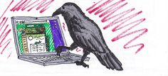 """Even crows love our site! .... though this one is probably just about to send in a sizing question along the lines of """"What do you have that works for talons?"""" By Cameron."""