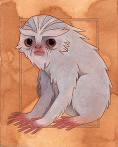 "fawn-lorn: ""The Demiguise is a peaceful, herbivorous creature that can make itself invisible. It resembles an ape with large, black eyes and long, silky hair. Demiguise pelts are highly sought after as the hair can be woven into Invisibility cloaks...."