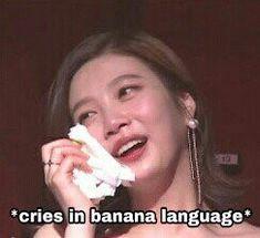 irene is going to have a solo Meme Pictures, Reaction Pictures, Meme Faces, Funny Faces, Seulgi, Banana Language, Kpop, Kim Bum, Blackpink Memes