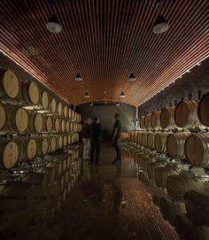 Adega Vinícola, Gran Cruz Cellar. Location: Alijó, Portugal; firm: A. Burmester Arquitectos Associados photos: Fernando Guerra | FG+SG; year: 2014