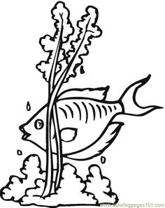 free printable coloring image Fish (3)