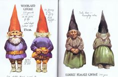 Gnomes the Book, first published in Dutch in 1976 as Leven en werken van de kabouter