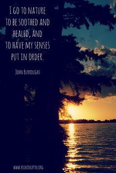 John Burroughs. #quotes #nature #pknuptn #lovetheland #losethelitter