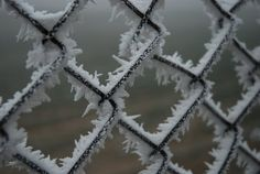 winter by whooa.deviantart.com on @deviantART