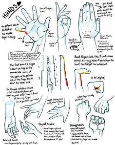 Tutorial Anatomy: Muscle, Fat, and Bone 4 (hands edition) by rinayun ✤    CHARACTER DESIGN REFERENCES: