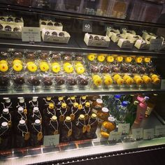 지하 카페에 파는 마카롱이 너무 귀여움 근데 작고 비싸서 구경만 잘 하고 옴ㅋ #가로수길#라인스토어#라인카페#마카롱