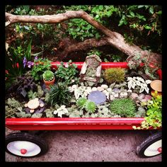 Our fairy garden in my old wagon(: