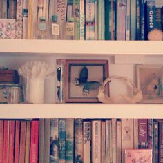 Our sitting room shelves; books, beetles and butterflies.