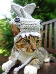 Shark Costume for Cats and Extrasmall Dogs   by iheartneedlework, $25.00