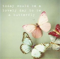 lovely day to be a butterfly quote