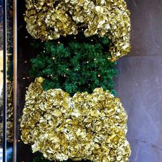 Hydrangea Fabulous Royal in gold by Vollering C.V. styled by Jeff Leatham for Christmas at the entrance of the Bulgari store in Paris last year! #volleringhydrangea #hydrangea #gold #christmasflowers #christmasdecorations #passionforflowers #teamleatham by volleringhydrangea