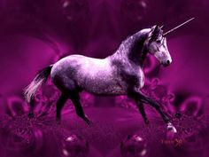 Purple Unicorn | Beautiful purple unicorn, abstract, animals, others, purple, unicorn