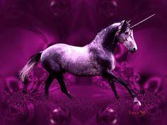 Purple Unicorn | Beautiful purple unicorn, abstract, animals, others, purple, unicorn