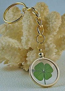 Four Leaf Clover Key-Chain. Perfect for me!