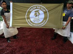 Costa Rica crop to cup Throughout The World, Costa Rica