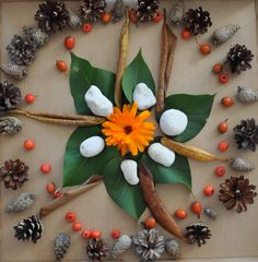 mandalas with natural objects...