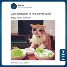 Memes Pinoy, Filipino Memes, Pinoy Quotes, About Twitter, Funny Memes, Jokes, Tagalog, I Laughed, Lol