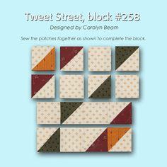 100 Blocks Sampler Sew Along   Block 47