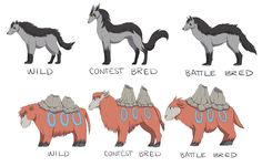 Breed variations of Mightyena and Camerupt