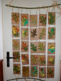 photo only: nice display of printed leaves on door