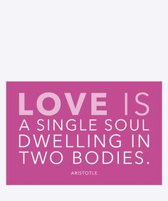 Love is a single soul dwelling in two bodies - Aristotle. Dimension: 20x30cm. Material: 100% Forex.
