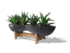 Modern Planters & Contemporary indoor & outdoor lightweight plant planters- My