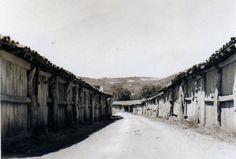 Armazém de sal (Feito de madeira) nas Salinas de Rio Maior | Portugal