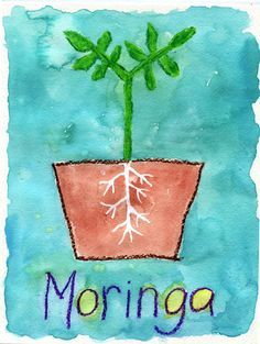 Art Projects for Kids: Moringa Tree Painting