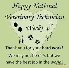Iluvnationalvettechweek  National Vet Tech Week