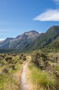 Kepler Track, Fiordland NP, The South Island, New Zealand