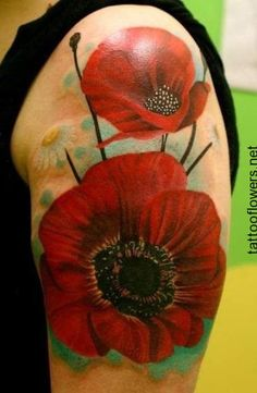 Poppy general meaning eternal sleep oblivion imagination red poppies and daisy tattoo photos with flower tattoos on arm mightylinksfo