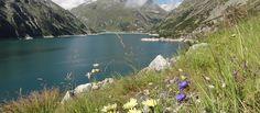 BERGFEX: Arlhöhe - Wanderung - Tour Kärnten River, Outdoor, Tours, Summer, Outdoors, Outdoor Games, The Great Outdoors, Rivers