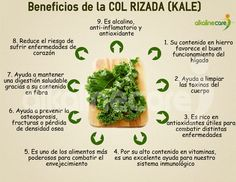 Beneficios de la Kale                                                       …