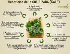 Beneficios de la Kale