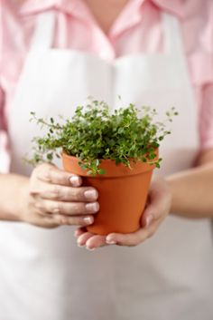 How to Cook with Unusual Herbs  Herbs add more flavor to your dishes than salt, and they're better for your heart.