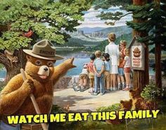 Smokey prevents forest fires
